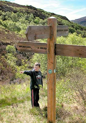 Boy pointing and signpost pointing
